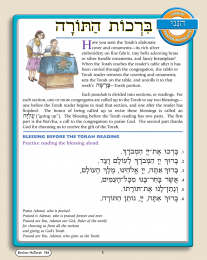 Hineni Prayer Booklet - Birchot HaTorah (Pack of 5)