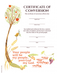 Certificate of Conversion BH