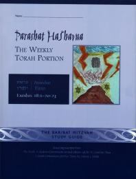 Parashat HaShavua Yitro