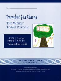 Parashat HaShavua P'kudei