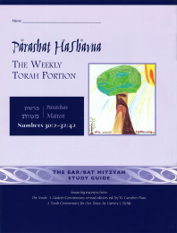Parashat HaShavua Matot