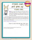 Hineni Prayer Booklet - V'zot HaTorah/Eitz Hayyim Hi (Pack of 5)